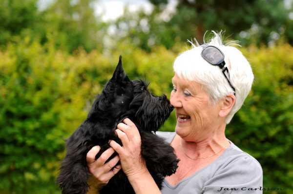 Jeanette kan lære dig, hvordan du får en super øjenkontakt med din hund